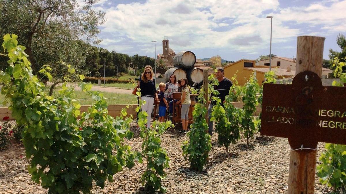 Les DO vitivinícoles reivindiquen els seus productes entre els consumidors de proximitat