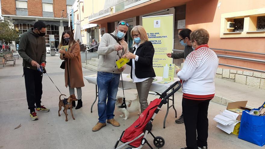Así luchará Benicarló para acabar con los orines de perros en la calle
