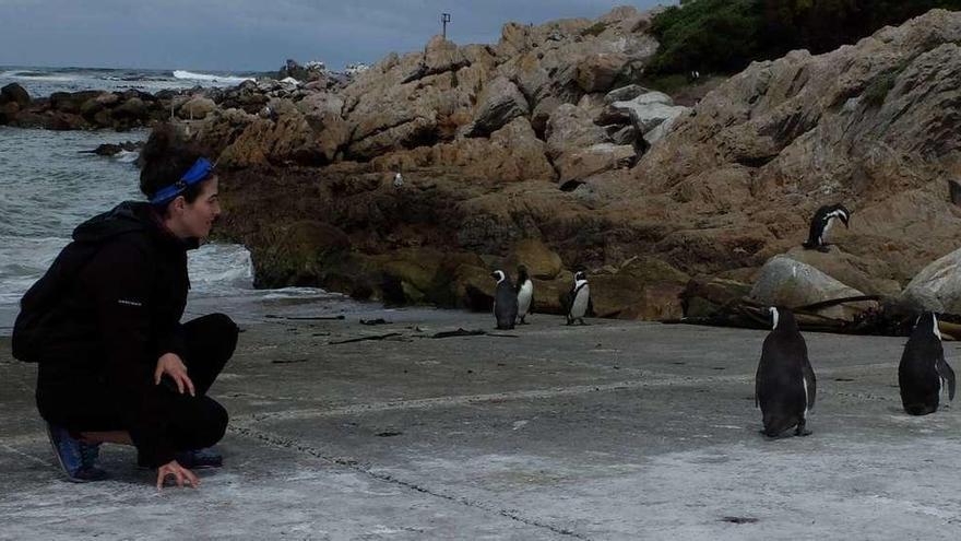 Ana Payo rodeada de pingüinos durante un trabajo de campo realizado en Sudáfrica.