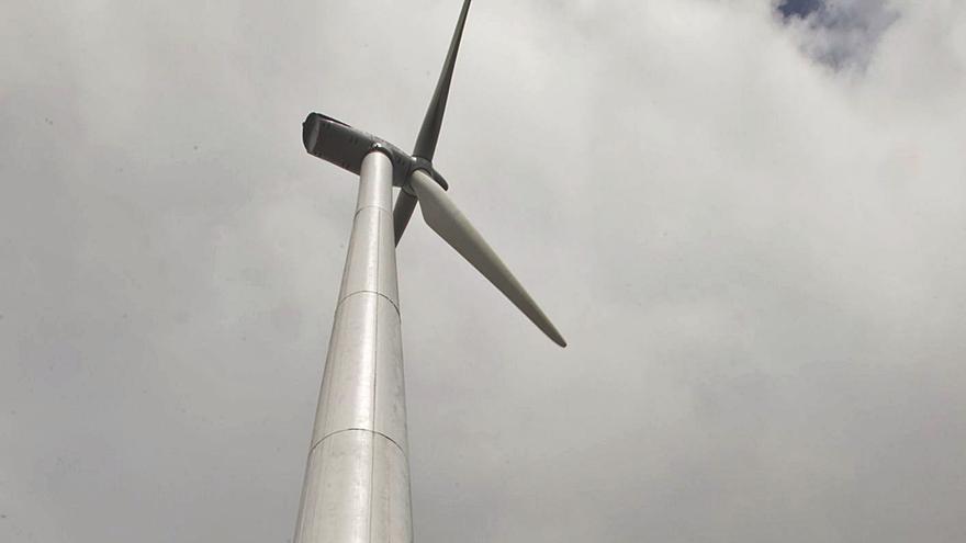 Así son los dueños de los gigantes eólicos asturianos