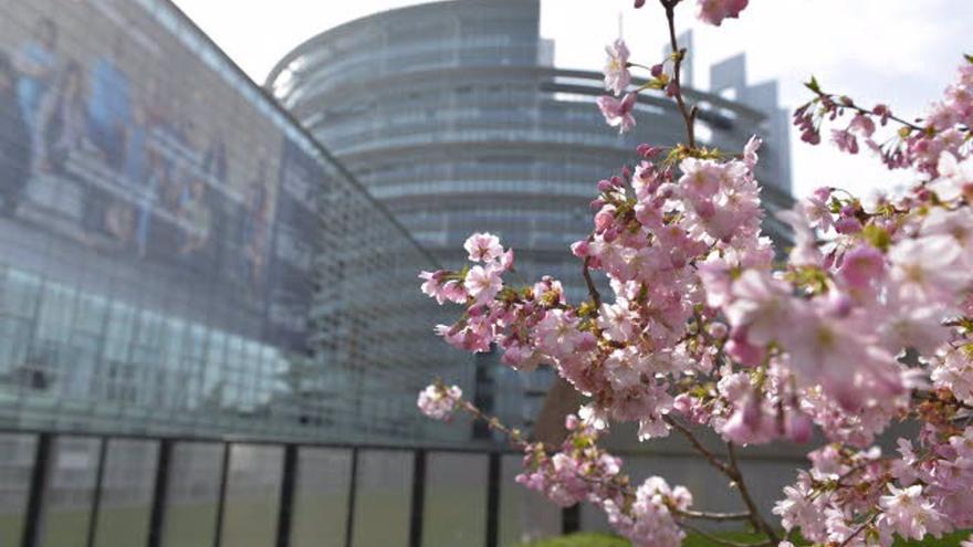 España ante el Tribunal de Estrasburgo por denegar la pensión de viudedad a una mujer casada por el rito gitano