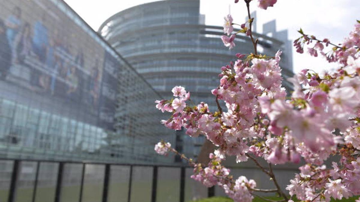 Archivo - Sede del Parlamento Europeo en Estrasburgo. -