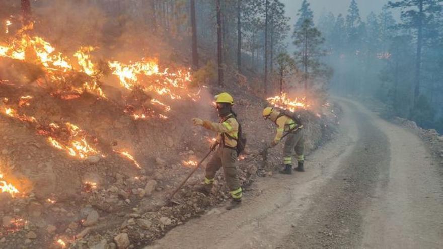 Unos 300 especialistas lucharán contra los incendios este verano en Tenerife