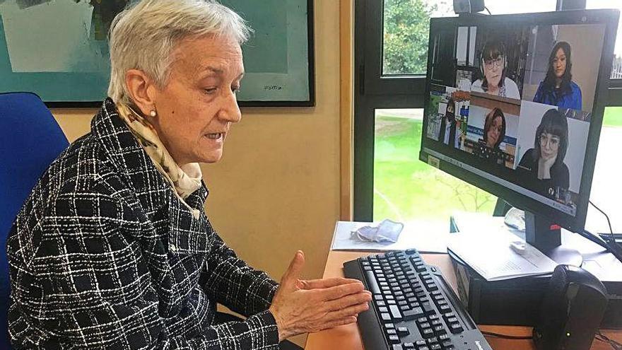 La consejera de Educación, Carmen Suárez, ayer, durante el encuentro virtual. | LNE