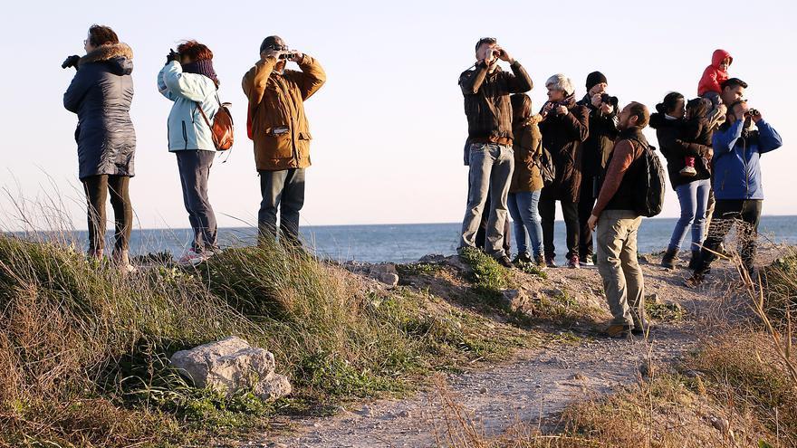 Descubre el Marjal dels Moros y la playa de Puçol con cinco visitas guiadas