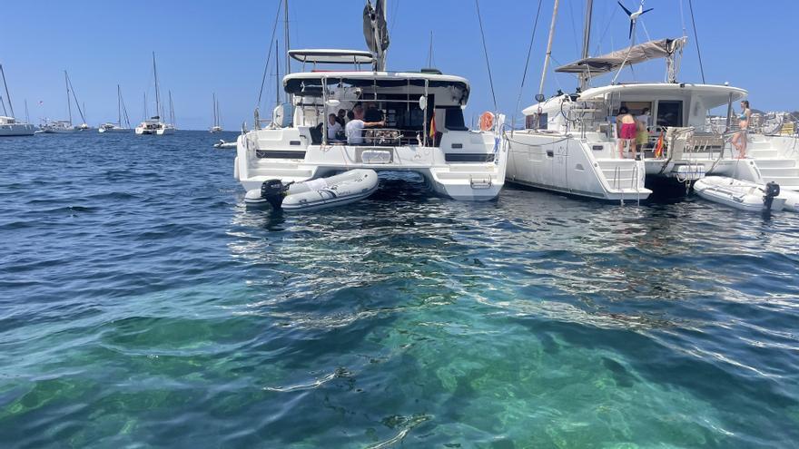 Un equipo de voluntarios informará a navegantes de Ibiza sobre la protección de la posidonia