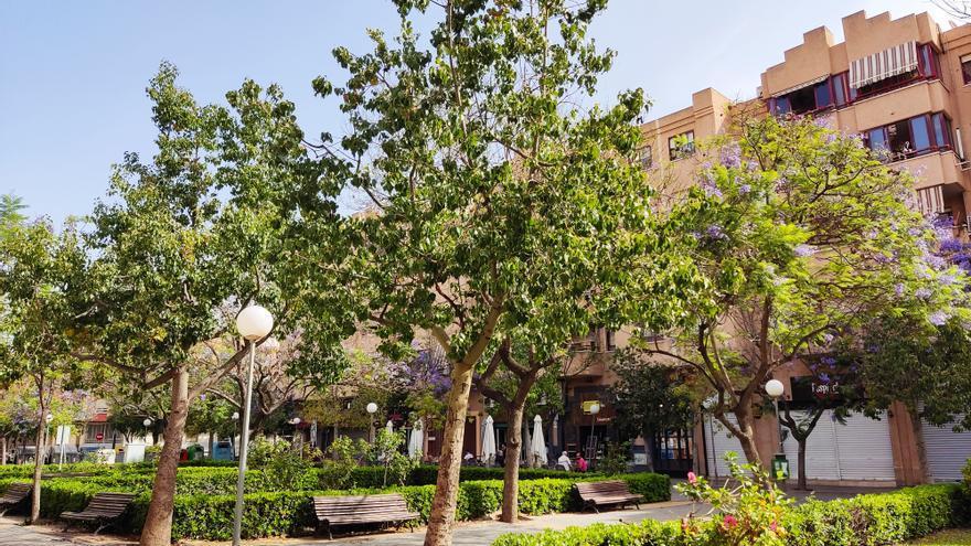 San Vicente, entre las ciudades europeas con más espacios verdes
