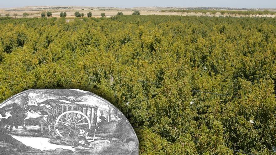 ¿Sabías que el 'Milagro de Calanda' nace en Castellón?