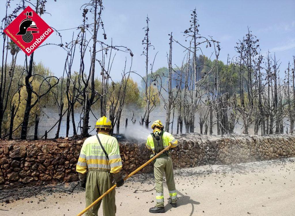 Los bomberos intervienen en un incendio forestal en Murov