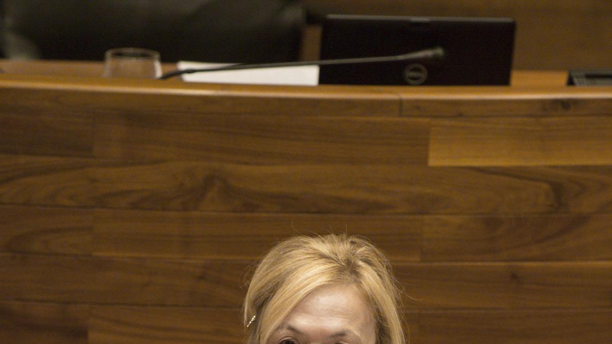 Sara A. Rouco, en una intervención parlamentaria.