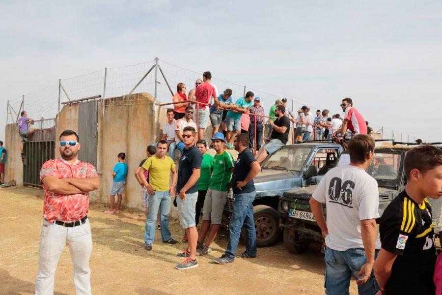 Fiestas en Zamora: Espantos en Carbajales