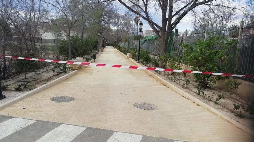 El viento tumba un árbol en Lorca y provoca daños en dos coches