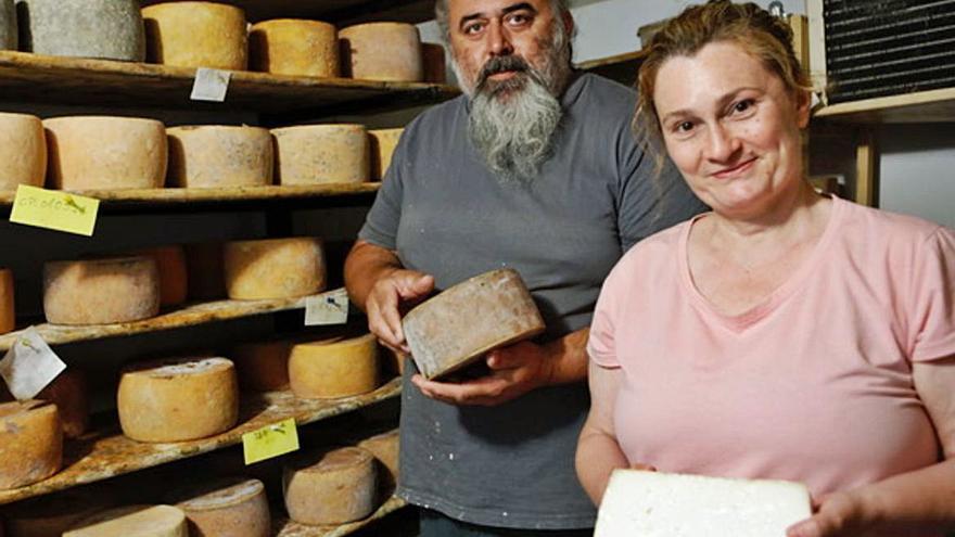 Sie meinen, Käse von Mallorca macht nicht viel her? Dann haben Sie diesen noch nicht probiert