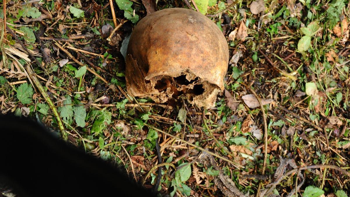 Imagen del cráneo localizado ayer por el Grumir de Bueu en el entorno de Cividad.