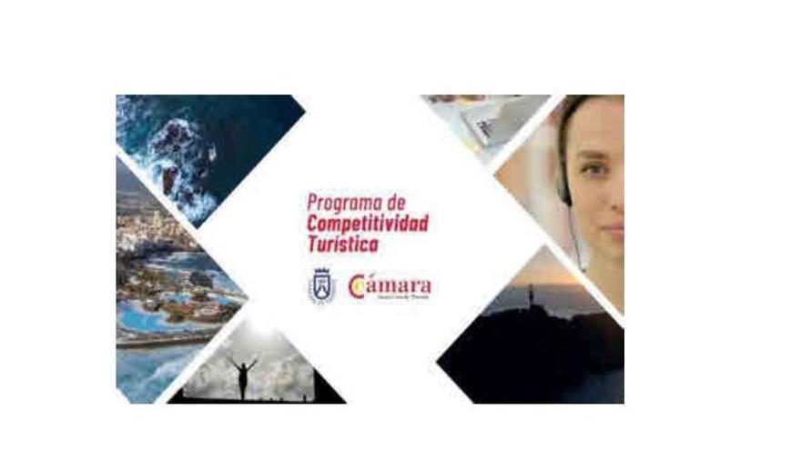 Diez empresas de Tenerife obtienen las ayudas de innovación en el turismo
