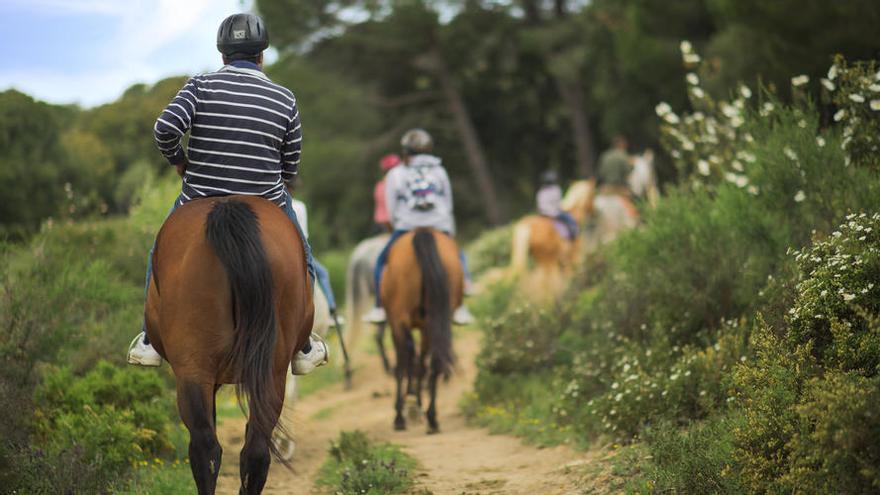 Turismo ecuestre: El placer de viajar a caballo