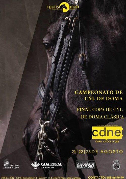 Cartel del campeonato de Doma Clásica de Castilla y León en Equus Duri.