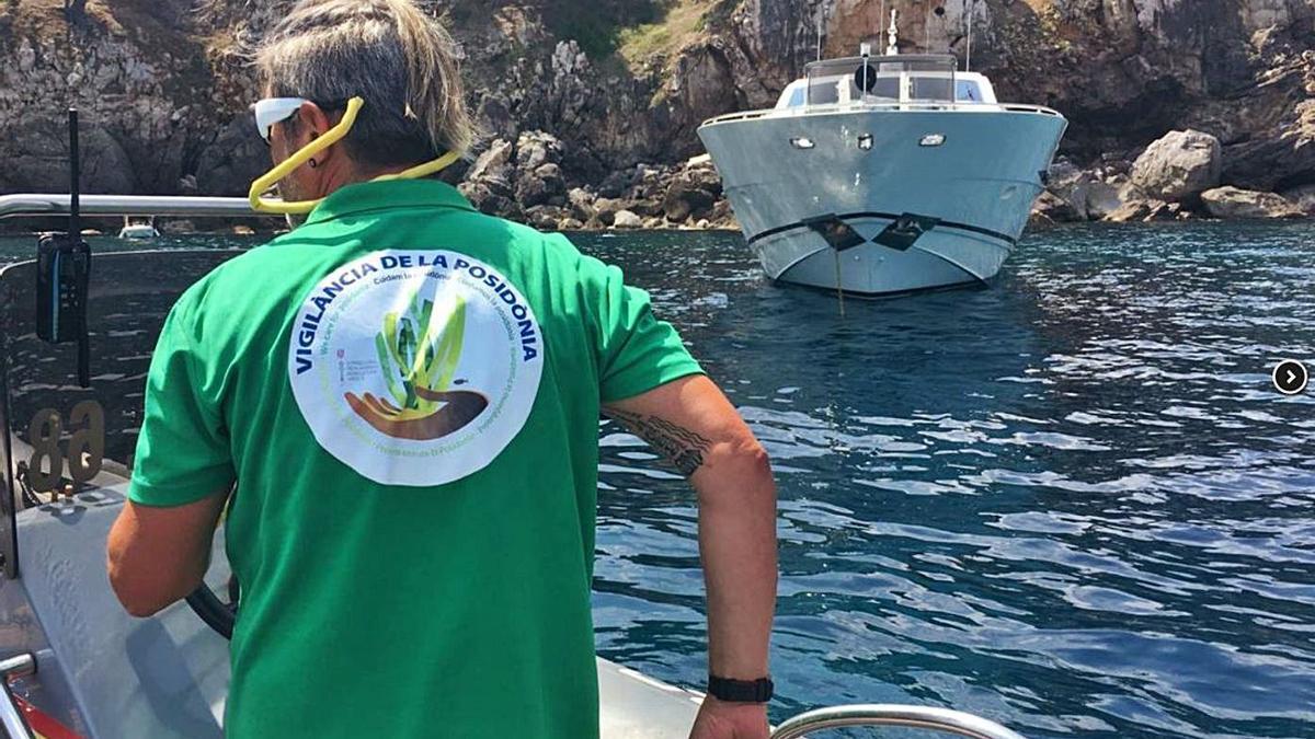 Detectan 5.694 barcas que fondearon sobre posidonia