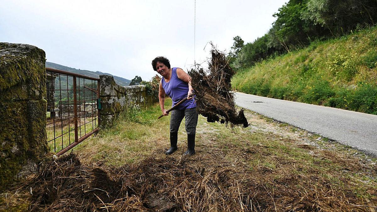 Una mujer realiza labores agrícolas. |   // GUSTAVO SANTOS