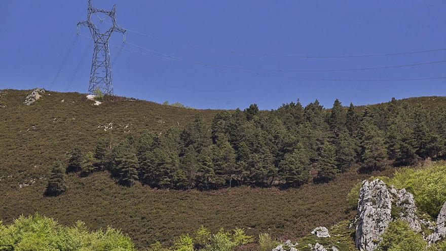 El Valle del Nalón exige a Red Eléctrica que desmonte las ochenta torres de la línea Lada-Velilla