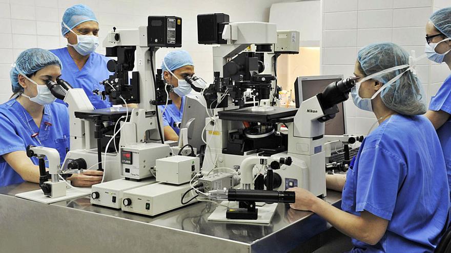 Investigadores de Alicante crean un test para determinar las causas  de la infertilidad masculina