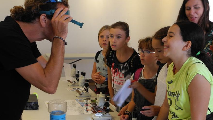 El Far de ses Coves Blanques acoge un taller sobre el mosquito tigre