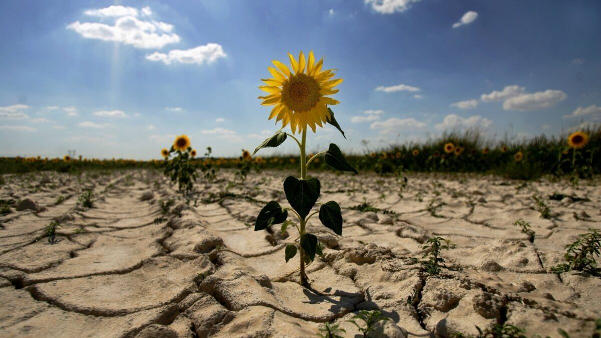 Documentan 3.500 sequías en 650 años gracias a rogativas religiosas
