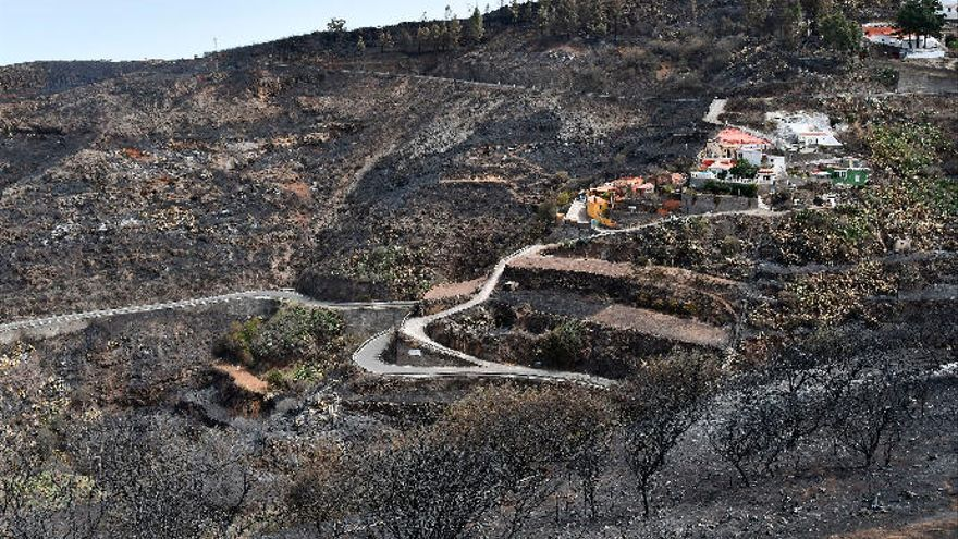 Los profesionales advierten de una mayor frecuencia de incendios forestales