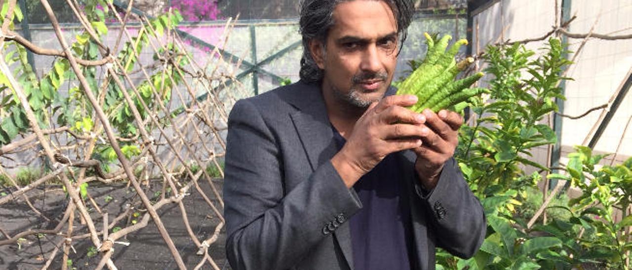 El chef Soenil Bahadoer, ayer, con el cítrico mano de Buda en Finca de Uga.