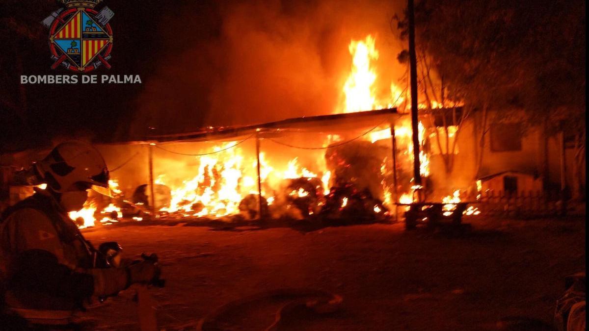 Incendio en un centro de equitación junto a Son Sardina