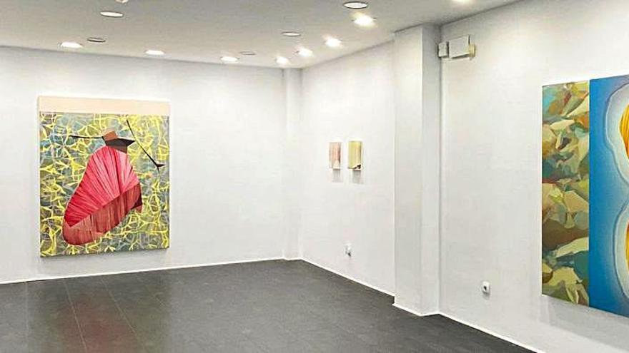 Daniel Verbis: pintura libre y viva en la Galería Llamazares