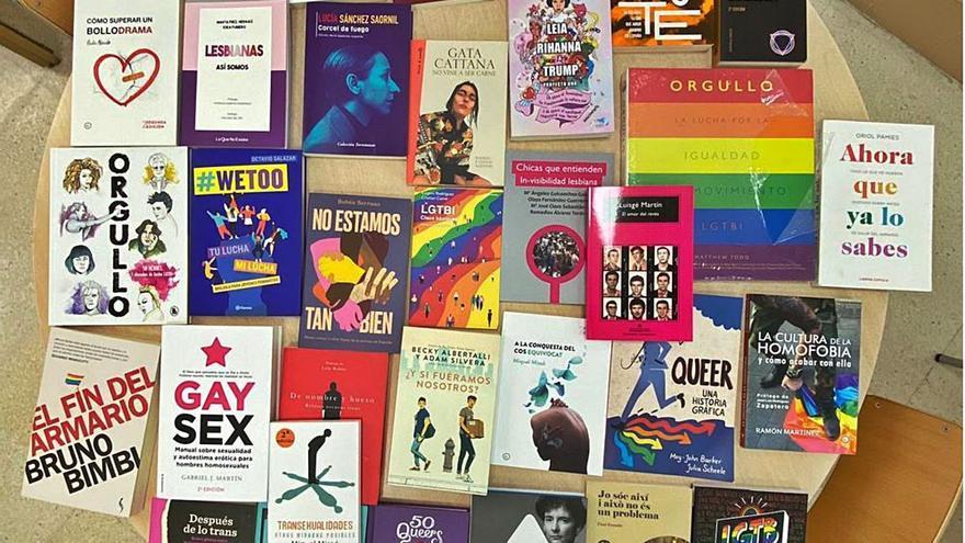 Educación recurrirá ante la justicia la retirada de los 32 libros LGTBI