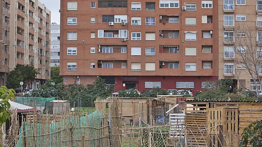 El PSPV pide a Ribó que reconsidere su apuesta por los huertos urbanos