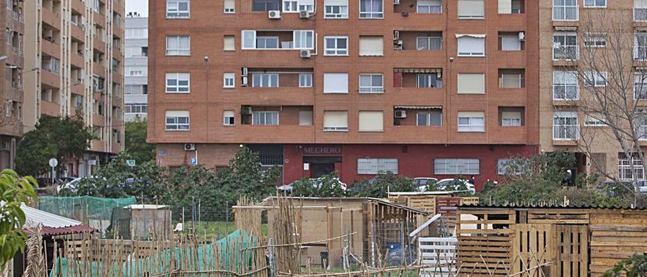 Huertos urbanos de Benimaclet. | F. BUSTAMANTE