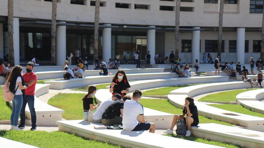 Universidad de Alicante, 55 títulos para ser graduado de acreditada calidad