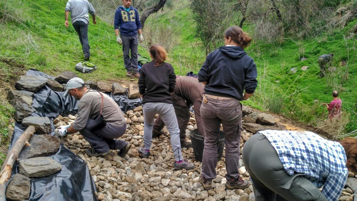 Trabajos para una pequeña laguna para anfibios en la Hacienda Mellado de Cártama.