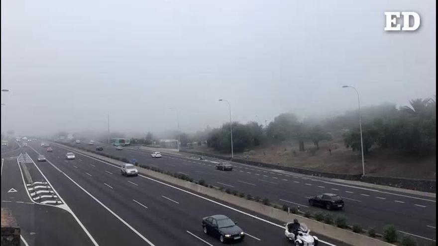 Niebla en La Laguna