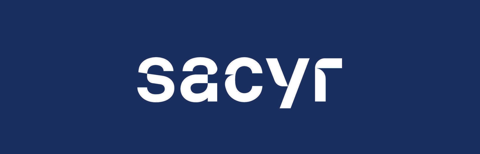 Logo Liga Sacyr Asobal