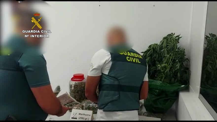 Detenido en Fuerteventura por cultivar marihuana en una azotea