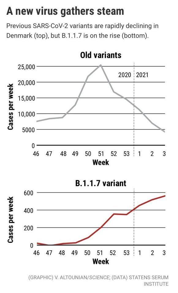 Propagación de las variantes del virus en Dinamarca.