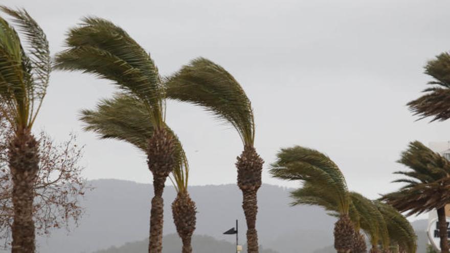 Ibiza, en alerta por lluvias y vientos que pueden llegar a 120 kilómetros por hora