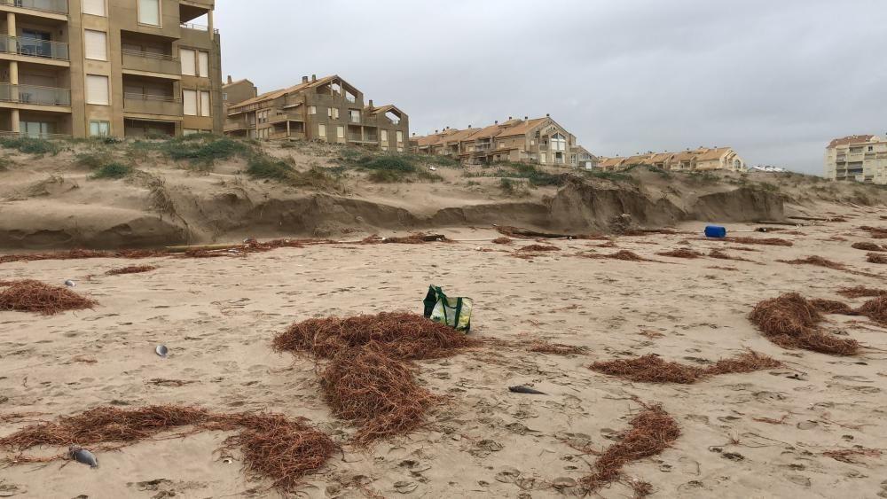 Suciedad que el mar ha devuelto a la arena en la playa del Perellonet.