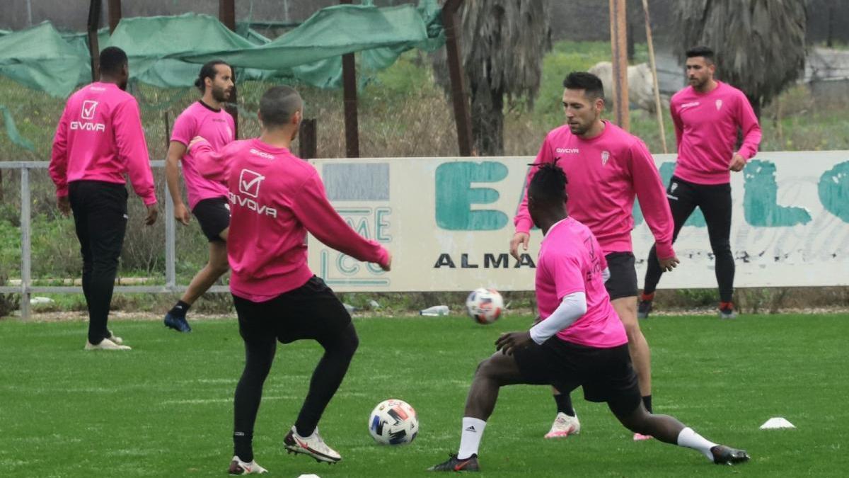 Pablo Alfaro, con el reto de recuperar efectivos en el Córdoba CF