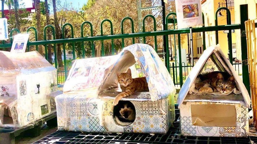 Así luce el nuevo parque felino del Grau de Castelló; el paraíso de los gatos