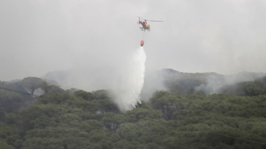 Gran desplegament dels bombers per sufocar un incendi de vegetació a Argentona