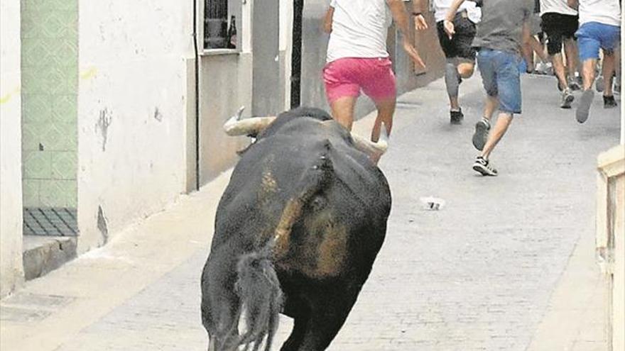 Los taurinos avalan la actuación de la Vilavella ante la cogida mortal