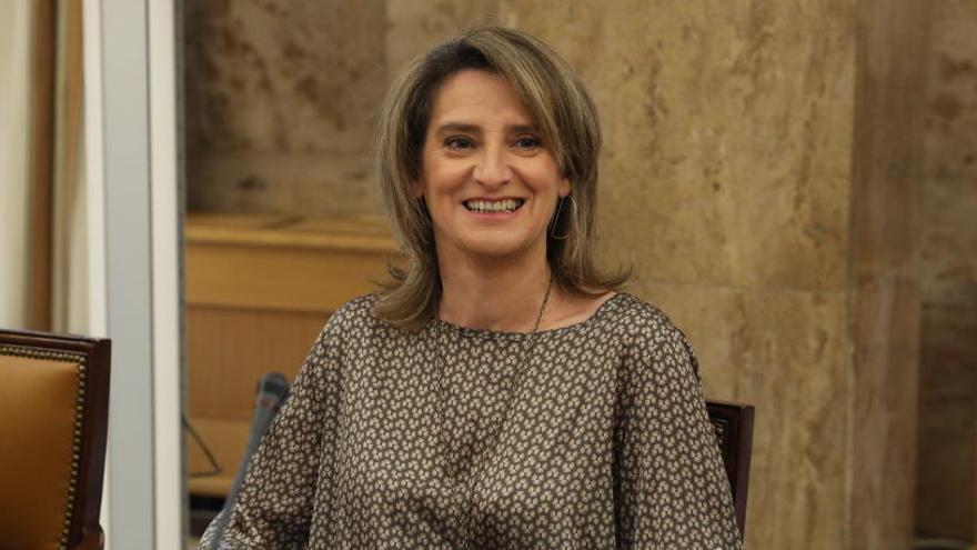 Teresa Ribera se reúne con Sánchez en la Moncloa