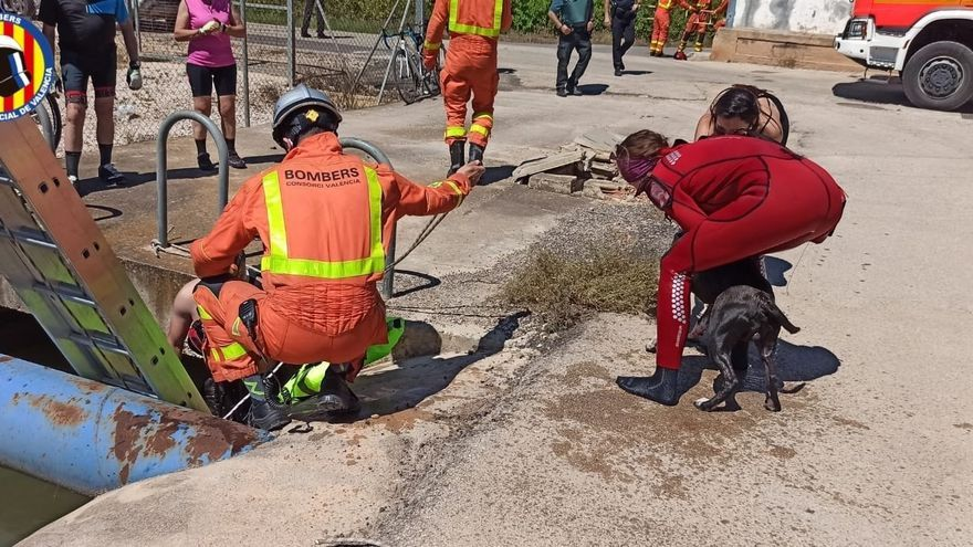 Rescatan a un hombre y su perro tras caer a una acequia