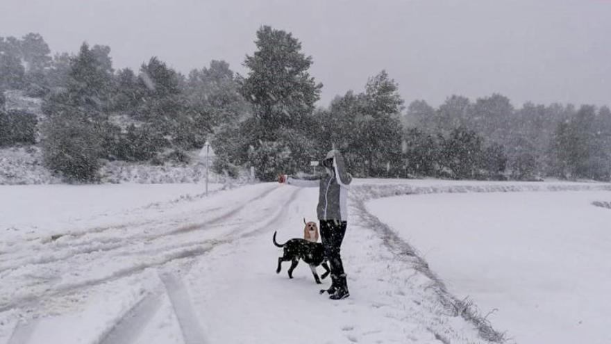 Una pareja de Benidorm queda atrapada en la Sierra de Mariola con una nevada de 80 cm