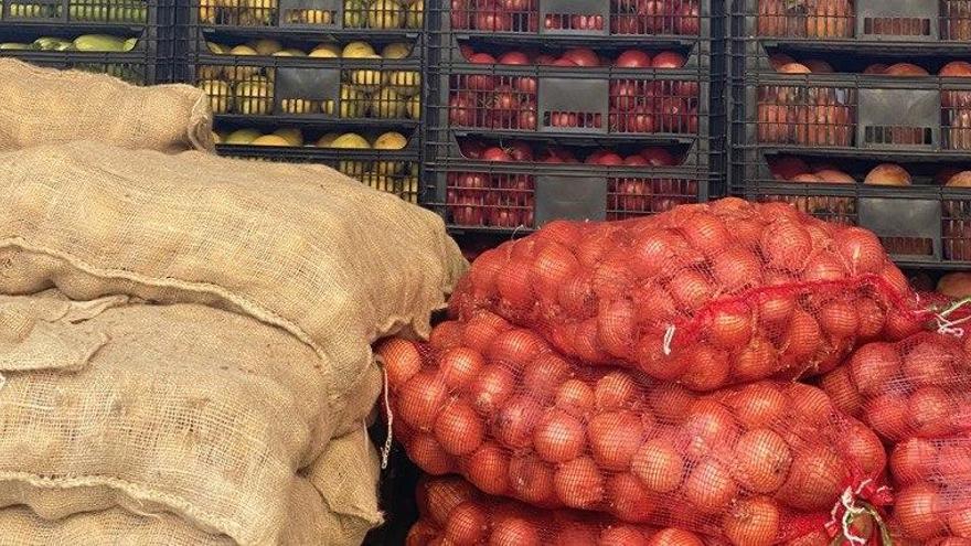 123 Tonnen Ernte-Überschüsse für Bedürftige auf Mallorca